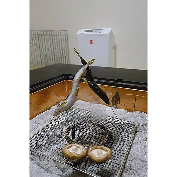 PMMS-AC100-Pの前で、脂の多い鮎を焼いてみました。鮎の下の炭から煙が上がり始めているのがわかりますか?