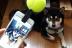 目線ちょうだ〜い♪ 「こっち向いてワン」で愛犬を撮影してみました