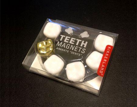 歯のマグネット「TEETH MAGNETS」