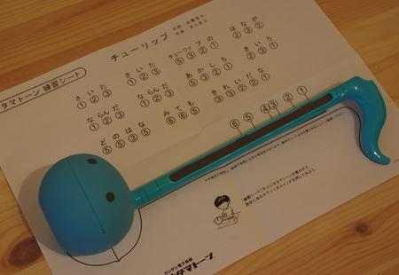 付属の練習シート。オタマトーンの音の位置をまずはこれでマスター