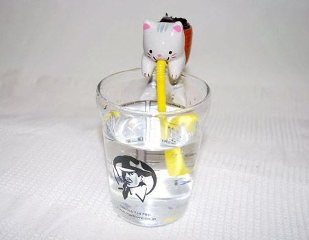 あたかも、ネコがストローで水を飲んでいるかのような姿がかわいい! ネコが乗っかるため、コップは安定感のあるものを選んだほうが安全だと思いました