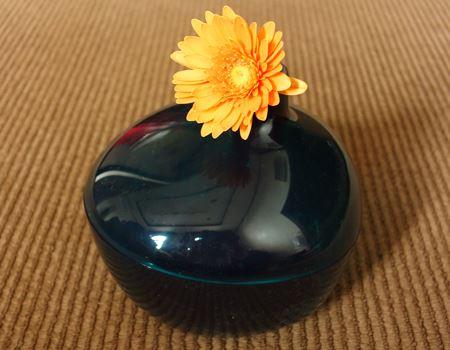 花瓶としての機能ももちろんはたしてくれます!