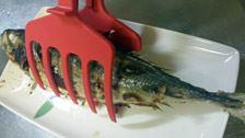 鯵の塩焼き。大きめのサイズの魚でも、カーブが上手にフィットして、しっかりホールド! 身を崩すことなく盛ることができました