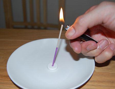 マタタビ側から火をつけるそうです。灰が落ちるので、必ずこのようなお皿の上に設置してください!