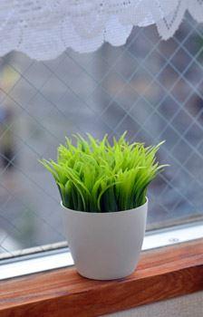 GRASS PEN STAND 観葉植物ペン立て