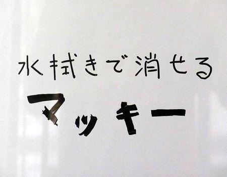 試しに冷蔵庫の扉に文字を書いてみました