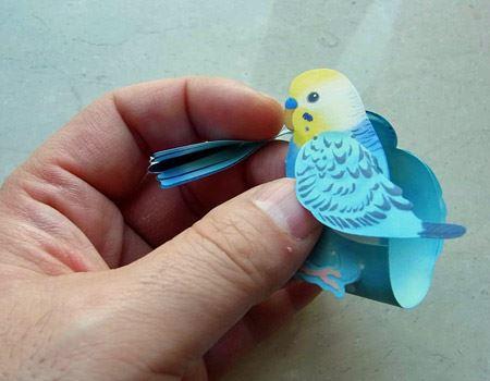 くるっと巻きつけるように結ぶと小鳥(セキセイインコ)に変身