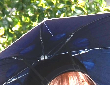 装着するとこうなります。私自身が、傘の柄になるということだ…