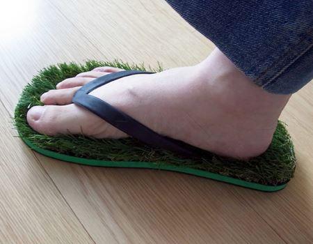芝生の上を素足で歩く時って気持ちいいんですよねえ〜