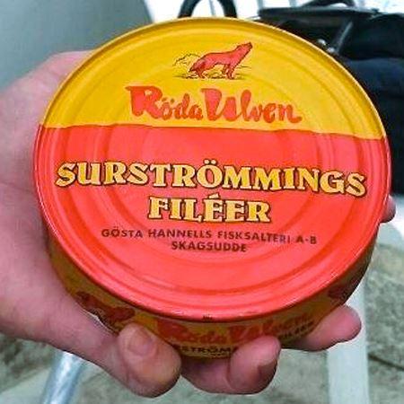 主にスウェーデンで作られている、ニシンの塩漬けを缶に入れて発酵させた食品です。大きさは僕の上腕二頭筋くらいの幅で、あまり見ないタイプの大きさです