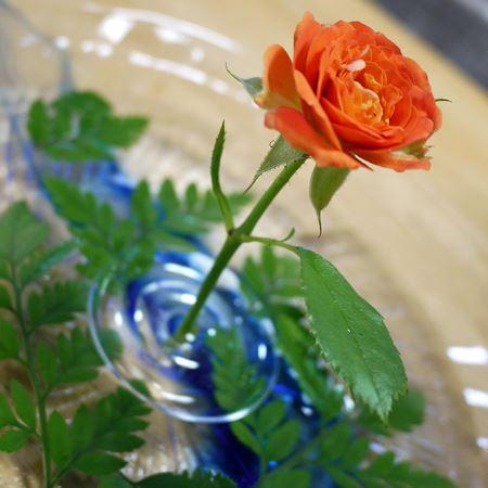 彩りを添えるなら赤いお花を飾るとまた美しいです