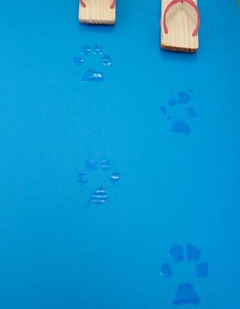 濡らした下駄で紙の上を歩いてみました!