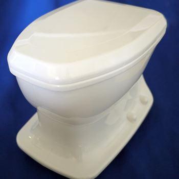 プラスチック製の洋式トイレです。大きさはありますが、軽いです