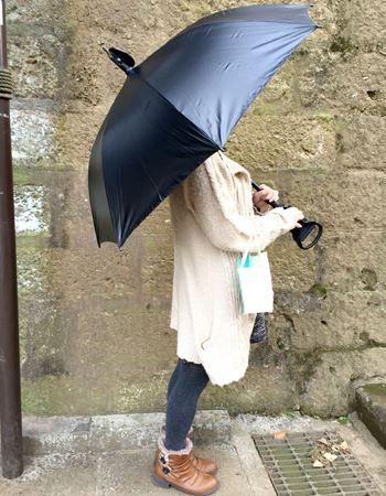 普通の傘として使うとこんな感じ
