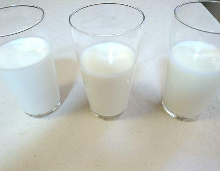 左から市販の牛乳、ノンホモ牛乳、自家製低脂肪乳