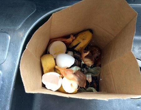 朝食べたバナナと、卵の殻など。まぁ、よくある生ゴミです。意外と大容量でした