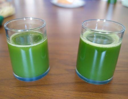 玉露(左)と抹茶(右)の差。玉露のほうが色が薄く、味わいもあっさりでした