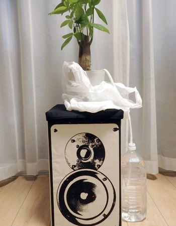 鉢植えをペットボトルの水位よりかなり上にしてみたところ、今度は水が逆流し、ペットボトルの水位が増えていました。水の減り具合を観察しながら、位置を変えていくことでちょうどいいバランスを保てる高さがわかります