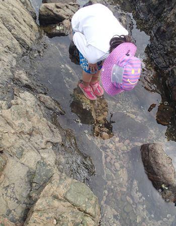 クラゲを探しているところ。実際に海に入りましたが、クラゲには刺されませんでしたよ