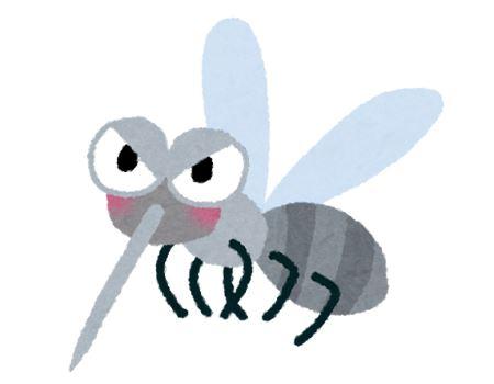 車中泊の大敵は蚊などの虫