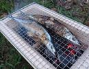 サンマをまるごと焼ける、長方形型の七輪で食欲を満たす!