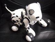 ロボット犬「ハロー! ズーマー」が楽しすぎ