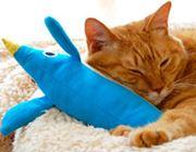 またたび入りのおもちゃでお猫様がメロメロ&スリムに!?