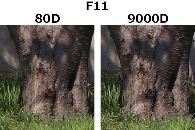 F11、1/200秒、ISO100
