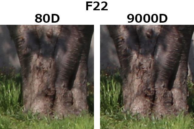 F22、1/50秒、ISO100