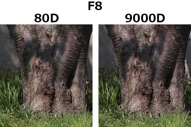 F8、1/400秒、ISO100