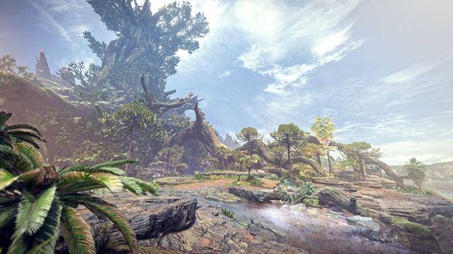 古代樹の森