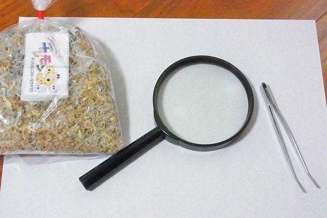 「チリモン」探しにあると便利なグッズは、虫眼鏡やピンセット、それに「チリモン」を広げる白いお皿や紙