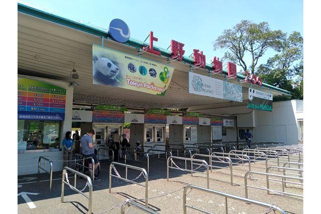 昼食の後にやってきたのは上野動物園。気温が相当高かったので、予想していたよりも混雑しておらず