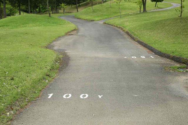 カート道路にグリーンまでの距離が書いてあるコースもあります