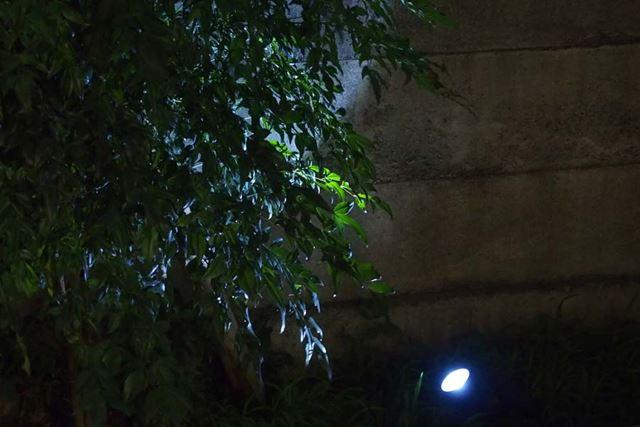 こんな感じで草木にライトアップができます