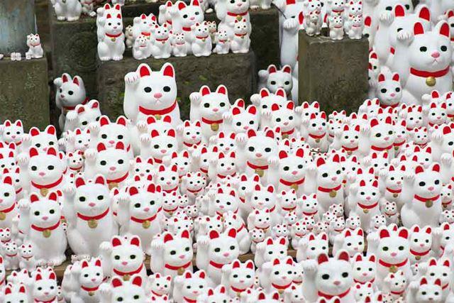 豪徳寺の猫たち。境内に納められているものですが、その数のすごさに圧倒されます