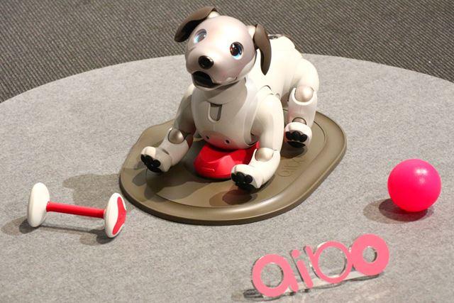 犬型ロボットのaiboが復活