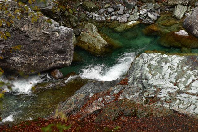 川沿いの山道を走っている車の中からもはっきりと確認できるほど川の水が碧い