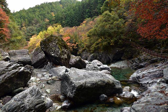 紅葉と川の碧のコントラストが見事です