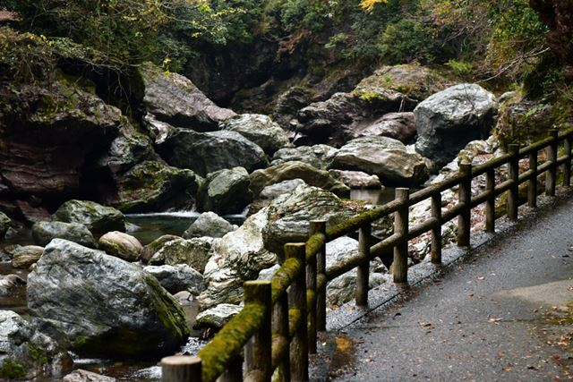 中津渓谷は県立自然公園に指定されているということもあり、遊歩道がしっかりと整備されていました