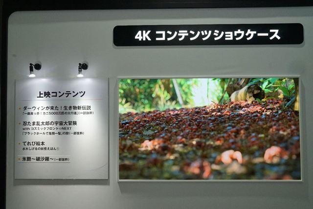 『ダーウィンが来た』の4K/HDR制作バージョン