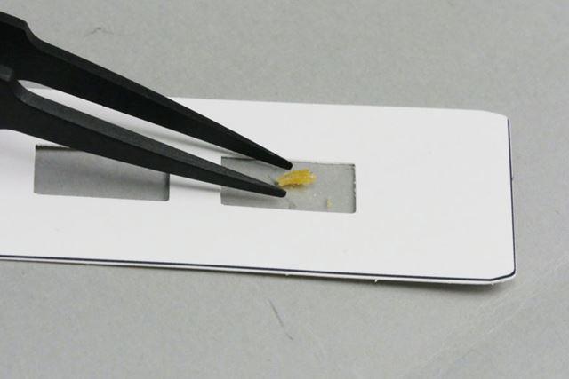 プレパラートをひっくり返してサンプルをシールの裏側に設置