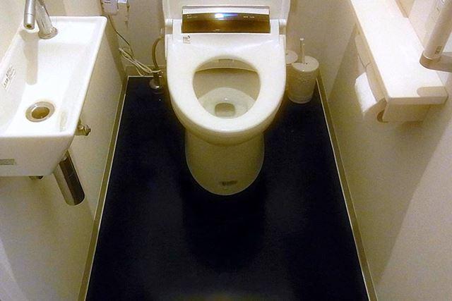 もともとはこんな感じのトイレでしたが…