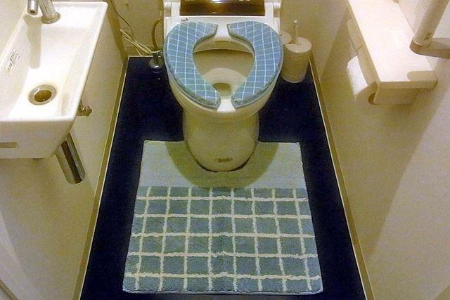 便座クッションとマットを敷くと、トイレがさらに快適空間に生まれ変わった感じがします