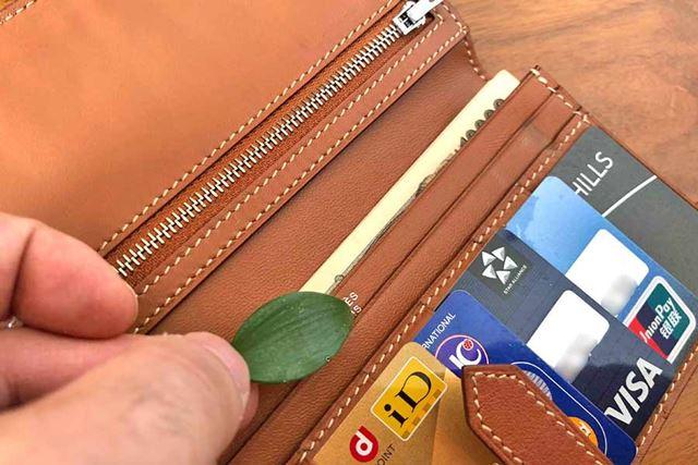 葉っぱを財布に入れておくとお金がたまる(お金と縁が強くなる)といわれています