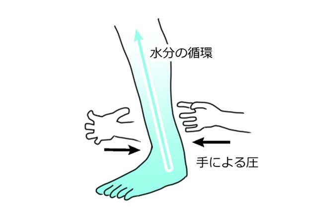 なぜ脚がマッサージで細くなるのか