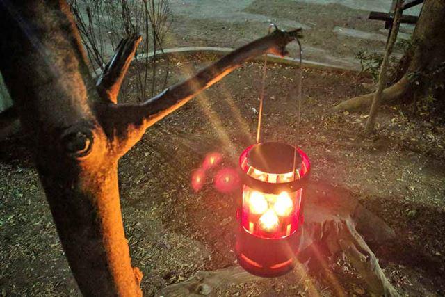 ワイヤーハンドル付きで、木などに安定してつるすことが可能