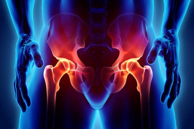 骨盤は上半身と下半身をつなぐ大切な部位です