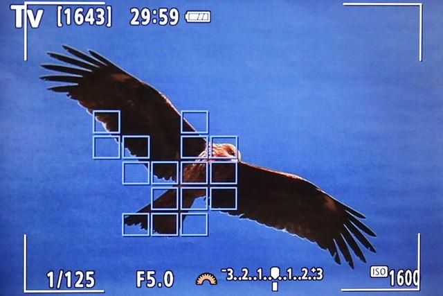従来よりも被写体の追尾性が向上し、サーボAFを使った高精度な追尾が可能となっている