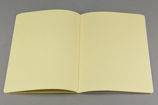 方眼罫のメモページ。文字やグラフ、イラストが書きやすい